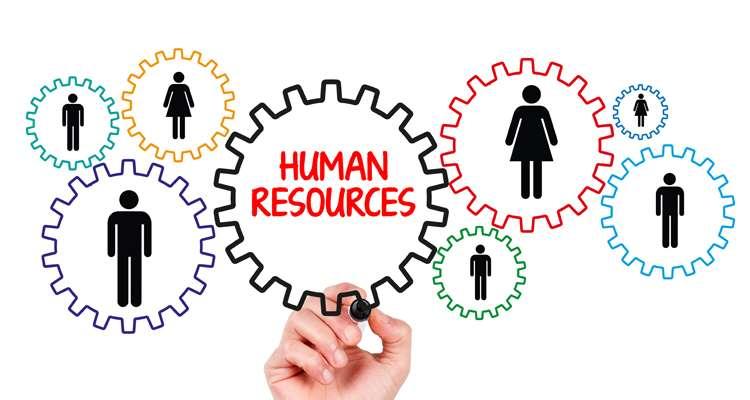 seller.az İnsan resurslarının idarə edilməsi kursu